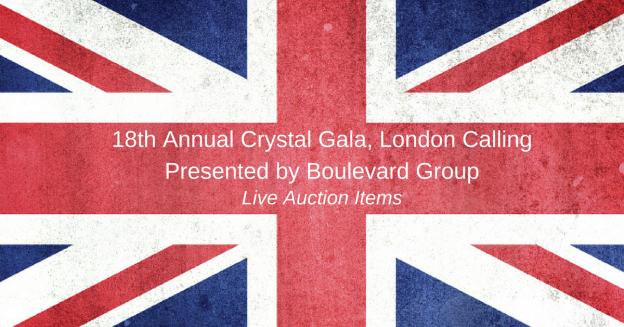 2016-live-auction-items